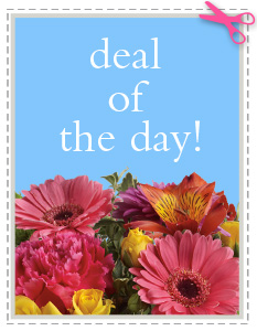 Deal of the Day in Forest MS, Petals, LLC